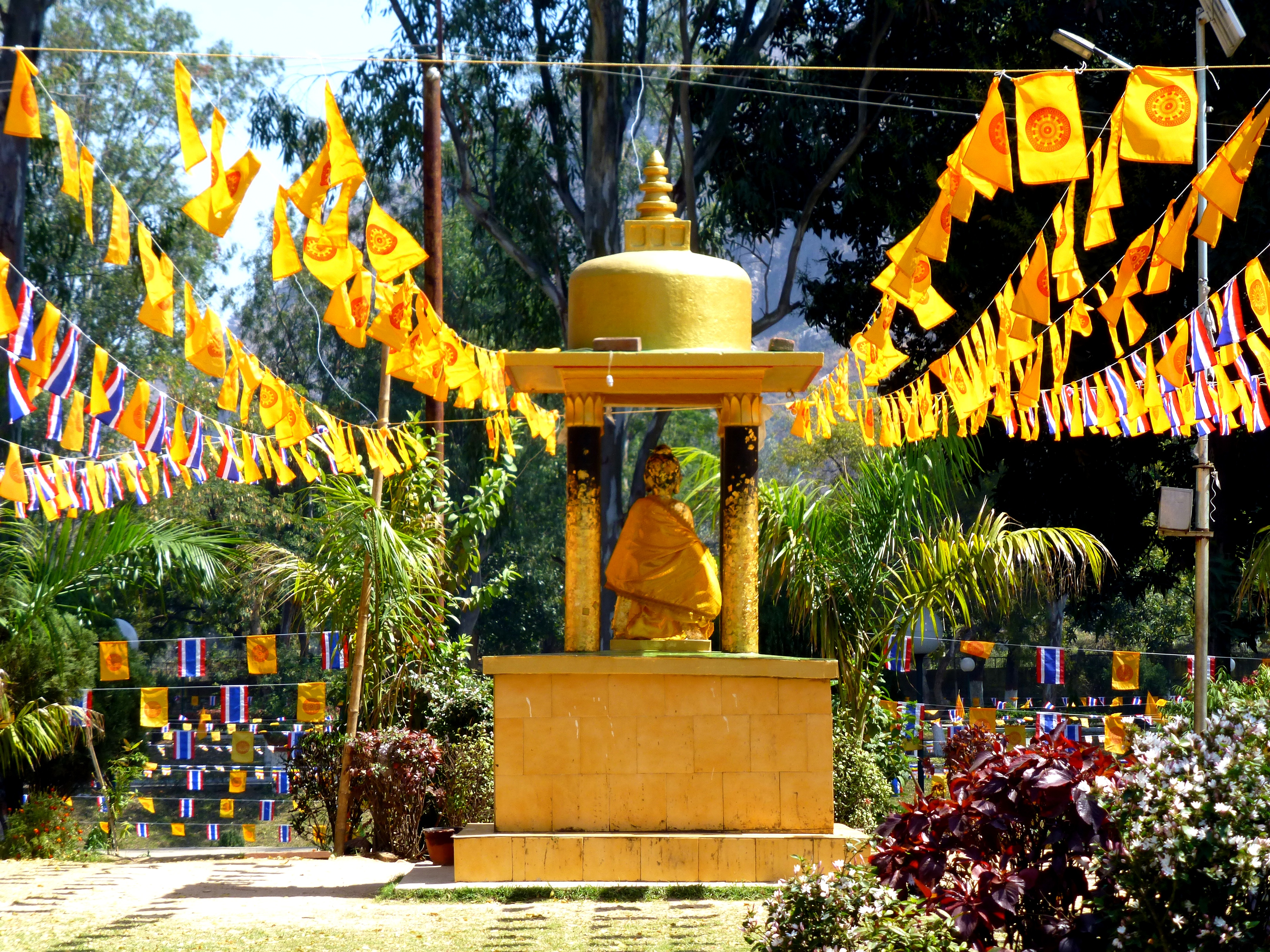 in and around rajgir  rajagaha