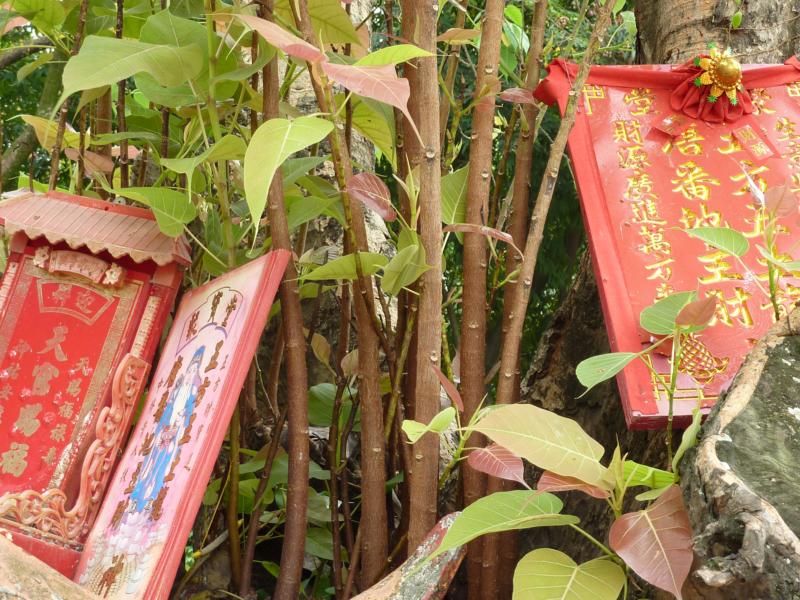 Chinese Shrine at Bodhi Tree