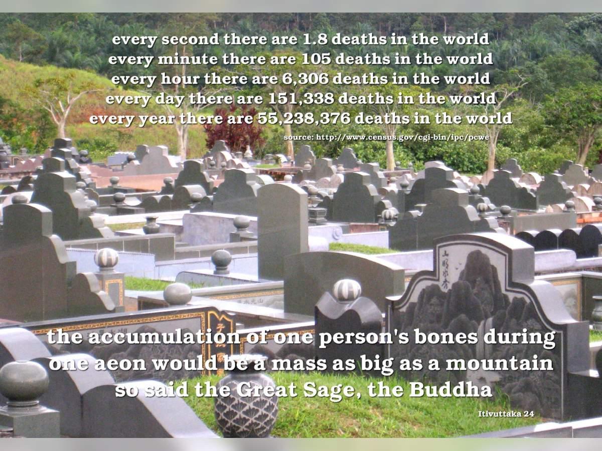 One Person's Bones...